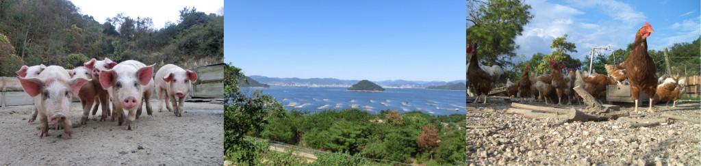 江田島ポーク・江田島地鶏・地鶏たまご